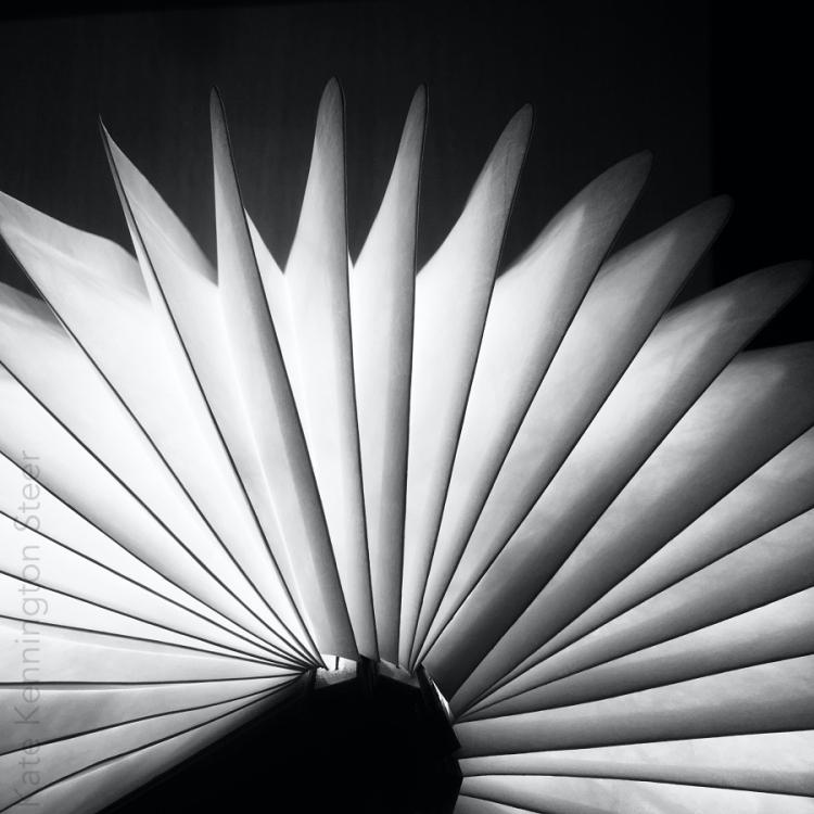 Book of Light (bl)